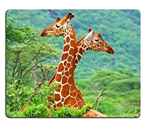giraffes african animals Savannah woodlands Mouse Pads Customized Made to Order Support Ready 9 7/8 Inch (250mm) X 7 7/8 Inch (200mm) X 1/16 Inch (2mm) High Quality Eco Friendly Cloth with Neoprene Rubber Liil Mouse Pad Desktop Mousepad Laptop Mousepads Comfortable Computer Mouse Mat Cute Gaming Mouse pad