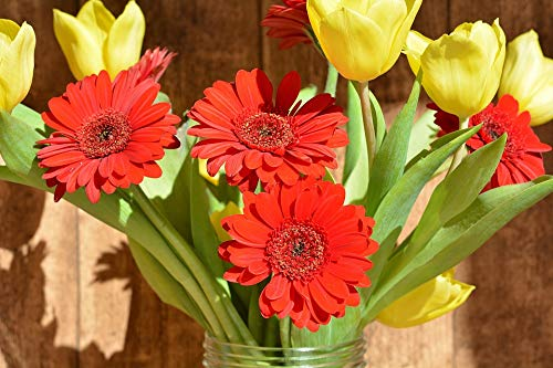 Home Comforts Canvas Print Cut Flowers Bouquet Tulips Gerbera Spring Flowers Vivid Imagery Stretched Canvas 32 x - Bouquet Gerbera Tulip