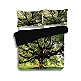 Difference Between Cal King and Eastern King iPrint Black Duvet Cover Set Queen Size,Nature,The Largest Monkey Pod Tree in Thailand Eastern Green Big Branches Growth Eco Photo,Green Brown,Decorative 3 Pcs Bedding Set by 2 Pillow Shams