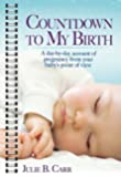 Countdown to My Birth: A Day-by-Day Account from Your Baby's Point of View