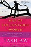 Map of the Invisible World: A Novel