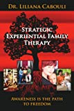 Strategic Experiential Family Therapy, Liliana Cabouli, 1425963501