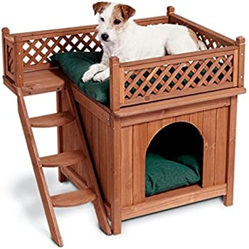 Amazoncom Merry Pet MPS002 Wood Room with a View Pet House Dog