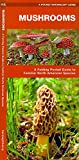 Mushrooms: A Folding Pocket Guide to Familiar North American Species (Pocket Naturalist Guide Series) (A Pocket Naturalist Guide)