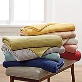 BrylaneHome Studio Basic Cotton Blanket (Spa,Twin)