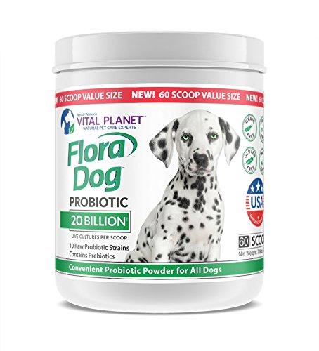 Vital Planet - Flora Dog - High Potency, Multi Strain Probiotic formuls for Dogs (60 Servings Value Size)