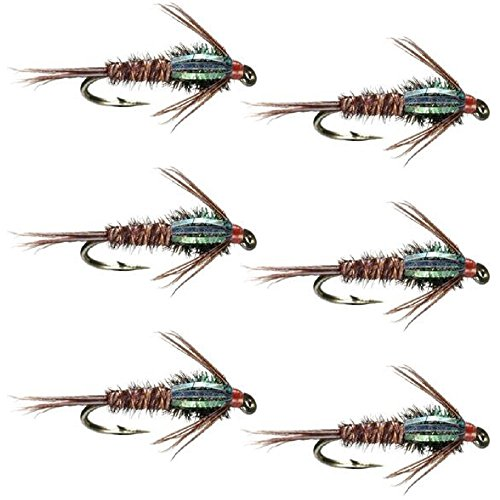 (The Fly Fishing Place Bead Head Flash Back Pheasant Tail Nymph Fly Fishing Flies - Trout and Bass Wet Fly Pattern - 6 Flies Hook Size 14)