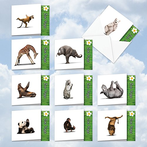 YOGA: 10 Assorted 'Square-Top' Blank, All Occasions Note Cards Featuring Fun and Flexible Zoo Animals Practicing Various Yoga Poses with Envelopes. (Production Photo Glossy Paper)