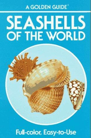 09 Seashell - 9