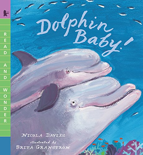 Dolphin Babies - Dolphin Baby! (Read and Wonder)