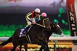 Horse Race - Chuo Keiba Gi Race 2011 Soshu Hen