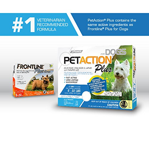 Frontline For Small Dogs Amazon