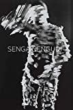 img - for Senga Nengudi book / textbook / text book