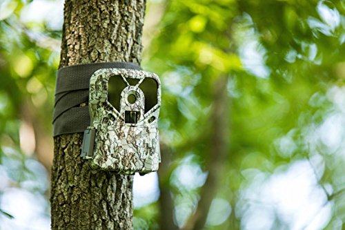 Exodus Lift II Trail Camera | .4 Second Trigger Speed, Black Flash Game Camera, Ultra HD Photos and Videos | Life's A Passion, Pursue It by Exodus Outdoor Gear (Image #3)