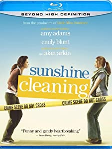 Cover Image for 'Sunshine Cleaning'