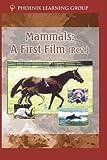 Mammals: A First Film