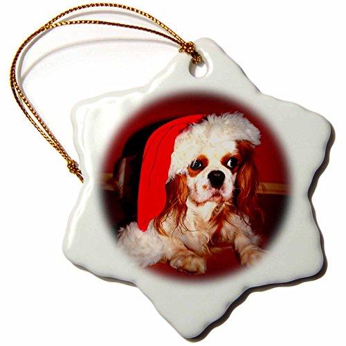 3dRose Sandy Mertens Christmas Animals - Christmas Hat on Adorable Cavalier King Charles Spaniel Dog - 3 inch Snowflake Porcelain Ornament (orn_269510_1) by 3dRose