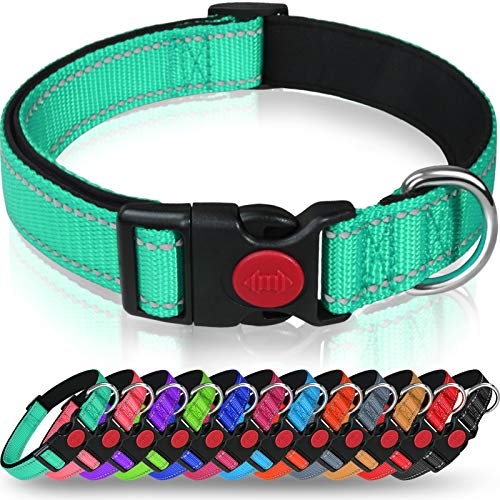 Taglory Reflective Dog Collar with Safety Locking Buckle, Adjustable Nylon Pet Collars for Puppy Small Medium Large and…