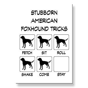 American Foxhound Stubborn Tricks Fridge Magnet 1