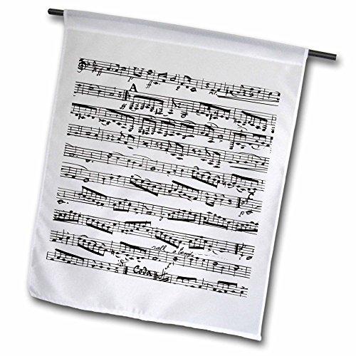 3d Rose 3dRose fl_112825_1 Musical Notes Vintage Sheet Mu...
