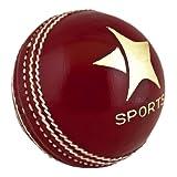 Red Championship Cricket Ball 5.5oz 76 Stitches