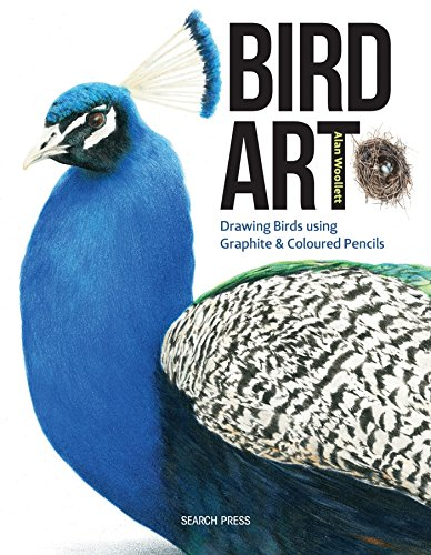 Bird Art: Drawing Birds using Graphite & Coloured Pencils
