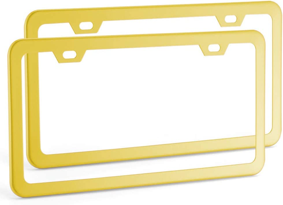 Pair Deselen Red License Plate Frame Stainless Steel with 2 Holes Screw Cap Poinsettia Red