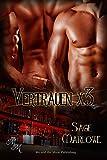 Vertrauen x3 (German Edition)