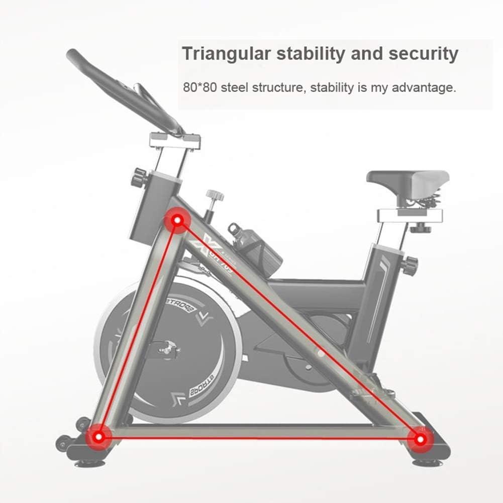 Zhipeng - Bicicleta estática para interiores (250 kg, para pérdida ...