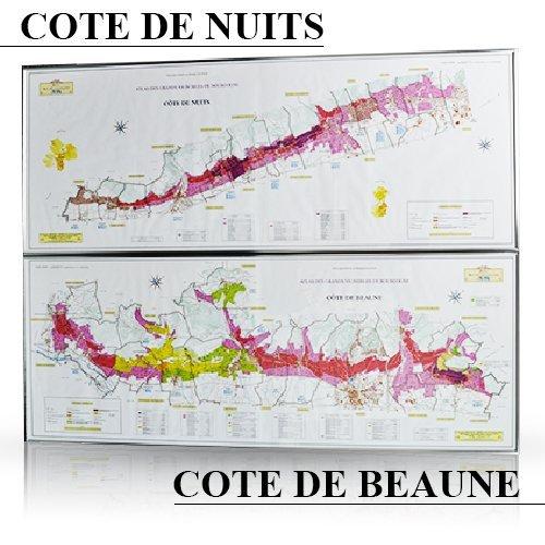 フランス/ブルゴーニュ(コートドール)特大地図ポスター【額縁なし】 B00JAXSK9Q