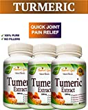 3 BOTTLES 180 Capsules TURMERIC CURCUMIN - Quick Anti-Inflammatory Joint Pain Relief - Antioxidant and Anti-Aging Health Benefits - 100% Pure Organic Supplement