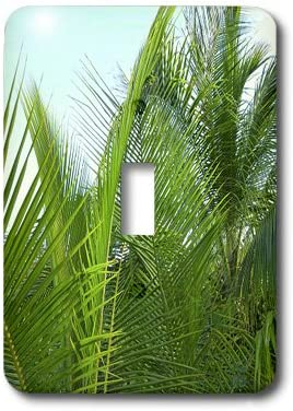 3dRose lsp/_38255/_1 Palm Fronds with Aqua Sky Single Toggle Switch