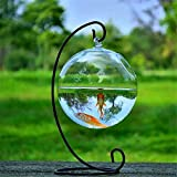 Shina Creative Hanging Glass Fish Tank Transparent Spherical Fish Bowl Both Fishbowl and Vases for Home Decoration with Black Stand