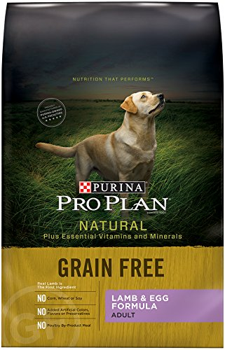 Purina Balance Grain Free Dog Food
