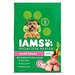 IAMS PROACTIVE HEALTH Small & Toy Breed Adult Dry Dog Food Chicken, 15 lb. Bag 81