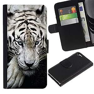 KingStore / Leather Etui en cuir / Apple Iphone 5 / 5S / Tigre so?oliento lindo feroz animal