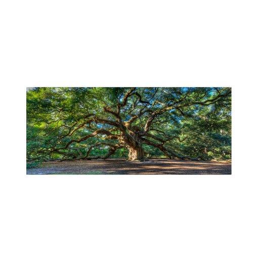 Angel Oak Charleston By Pierre Leclerc Work, 24 By 47 Inch Canvas Wall Art
