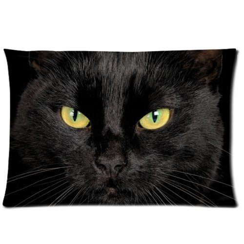 the Black Cat in the Dark Zippered Pillow Cases 20x30 (one side) Decorative Throw Pillow ,Throw Pillow Case, Pillowcase Amoior