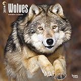 Wolves 18-Month Calendar, , 1465016457