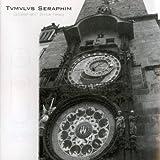 Centenarian'S Divine Lvnacy by Tvmvlvs Seraphim