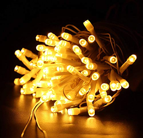 A & Y – Store Still LED String Light for Diwali Christmas Home Decoration (GOLDAN, 40 FOOT/12 Meter)