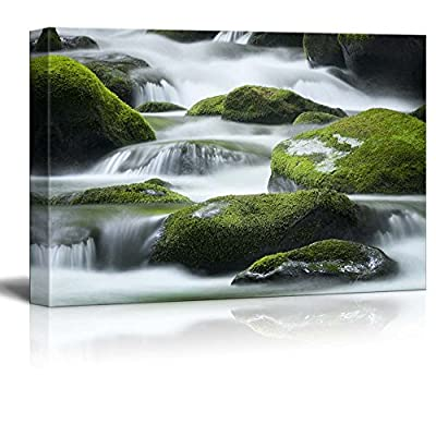 Beautiful Scenery Landscape Cascading Water Over Bright Green MossCovered Boulders in Tennessee - Canvas Art Wall Art - 16