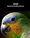 2020 Weekly and Monthly Planner: Parrot Bird - Monthly Calendar with U.S./UK/ Canadian/Christian/Jewish/Muslim Holidays- Calendar in Review/Notes 8 x 10 in. Exotic Birds