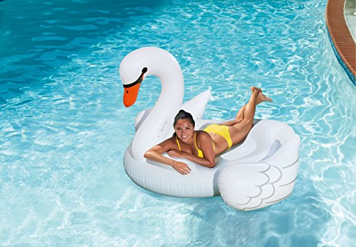 SUMMER PALMS Giant Swan Float