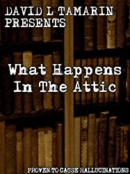 What Happens In The Attic