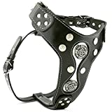 Bestia ''Hektor Genuine Leather Studded Dog Harness for Large Breeds only