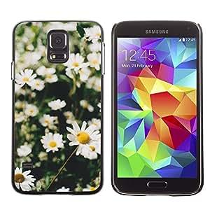 Caucho caso de Shell duro de la cubierta de accesorios de protección BY RAYDREAMMM - Samsung Galaxy S5 SM-G900 - Field Sun Green Nature