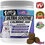 Best Calming Aid 100 Soft Chews for Dogs Relieves Stress Separation Anxiety Motion Sickness Thunderstorm Fireworks Nausea. Promotes Comfort.100% Natural Supplement. Chicken Flavored Treats Made in USA