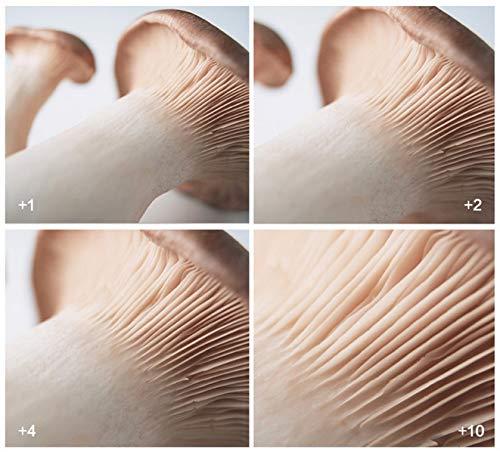 Lente de Macro Phorex 37 mm + 10 aumentos, 37 mm