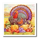 3dRose ht_3206_2 Happy Thanksgiving Iron on Heat Transfer for White Material, 6 by 6-Inch